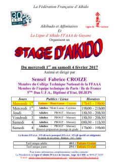 affiche-stg-ligue-guyane-fevrier-2017-f-croize_001